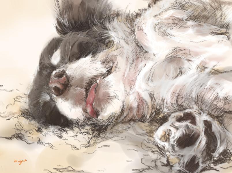 リアルな愛犬・愛猫の似顔絵を描きます お写真そっくりにお描きします。