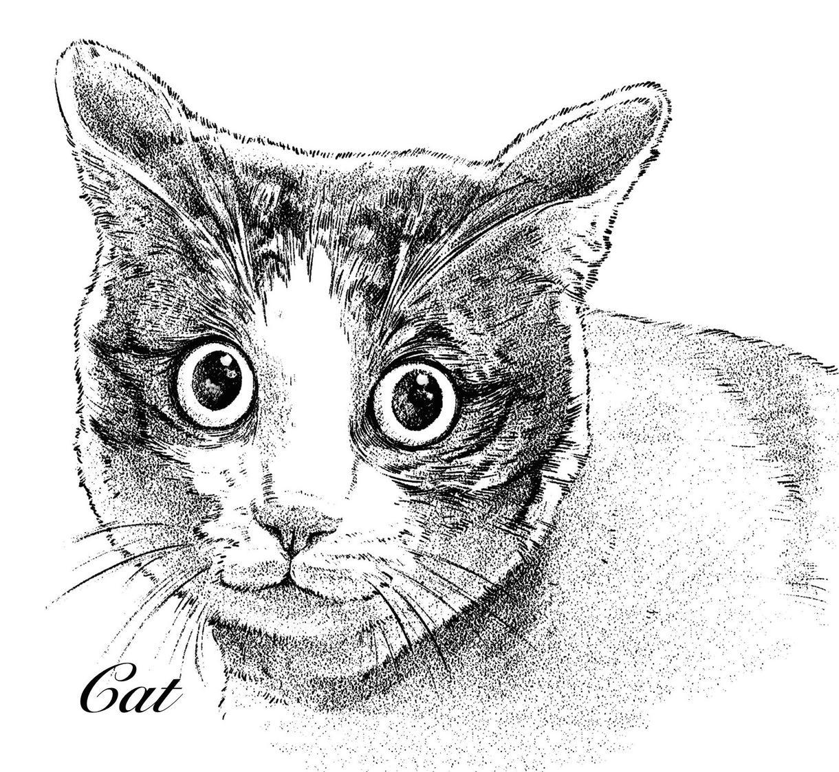 ペットのイラスト描きます 大切なペットのイラスト作成します、記念や観賞用に!