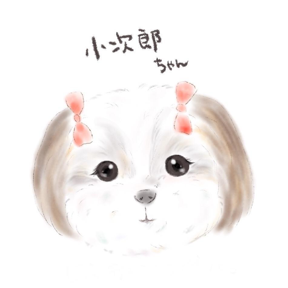 ふんわりとしたペットちゃんの似顔絵描きます 絵本のようなイラストをアイコンやプレゼントに