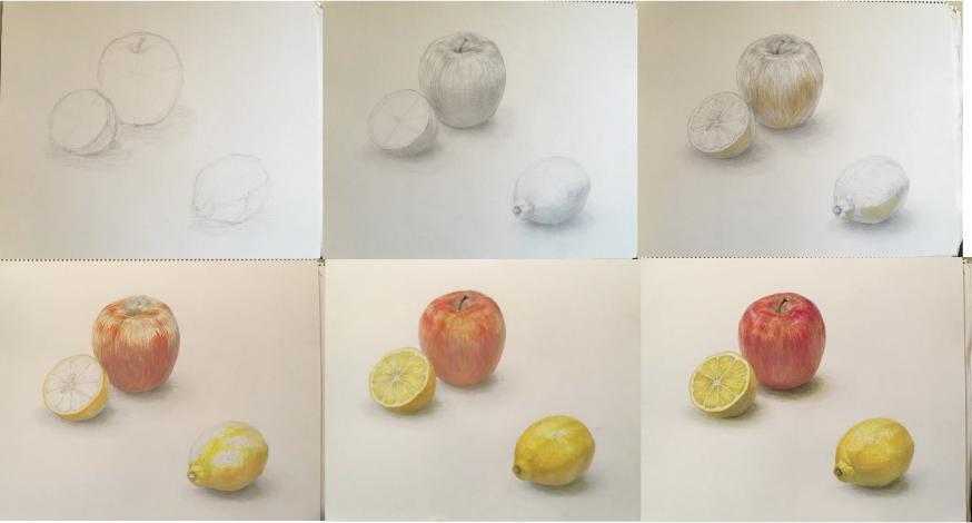 基礎から学ぶデッサン・着彩の指導をします 美術講師によるアドバイスや添削、デモストレーションをします。