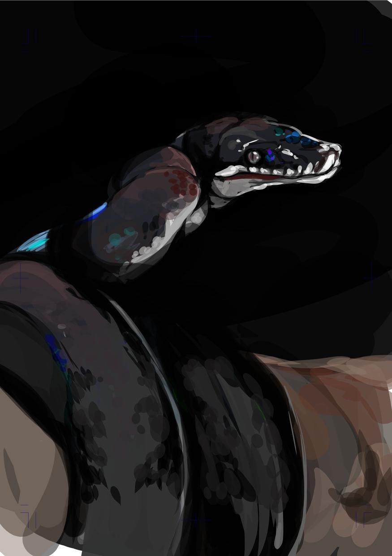動物描きます 爬虫類・両生類など動物の絵が欲しい方向け