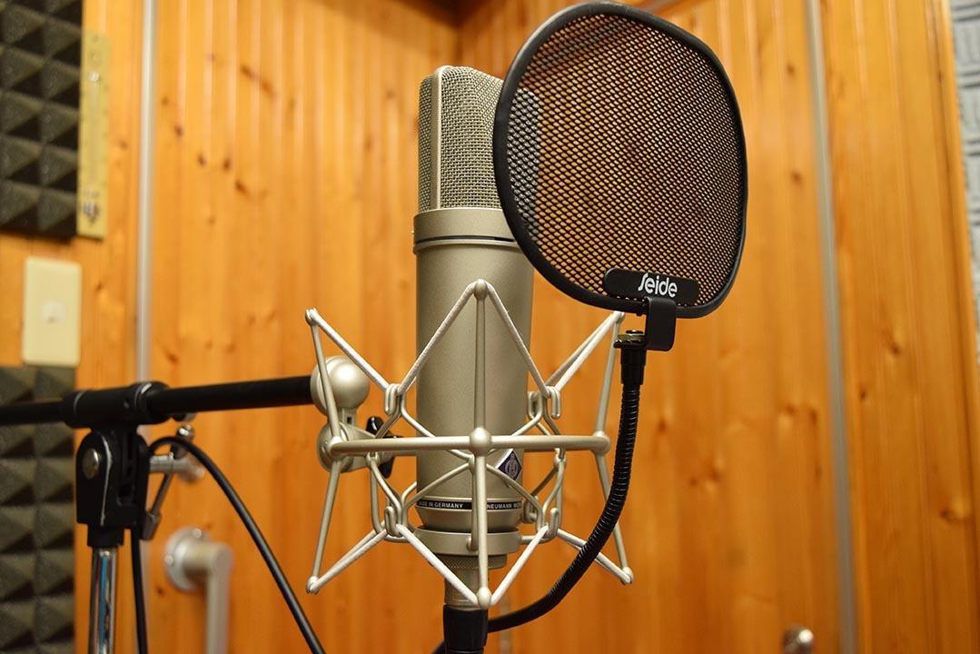歌い手さんや動画投稿者さんの音声を調声いたします 自分の声を活かした動画を投稿したい人にオススメです。