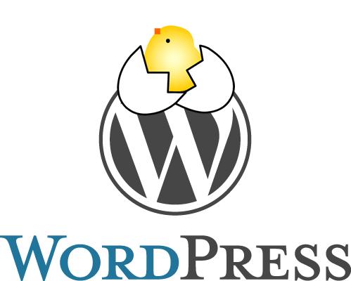 WordPressサイトの立ち上げを代行いたします。今ならなんとワンコイン500円で!