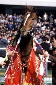 ダービー限定サイン読みから2つの連対馬番教えます ダービー馬は他のサインからダノンキングリーで!