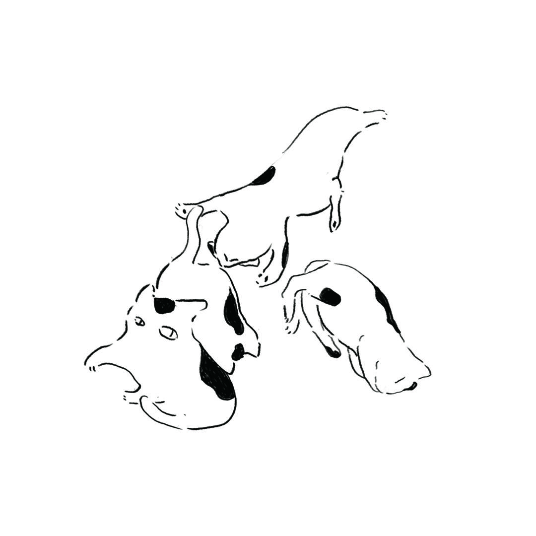 ゆるい猫のイラスト描きます 鳥獣戯画を彷彿とさせるゆるい雰囲気のねこを描きます。 イメージ1