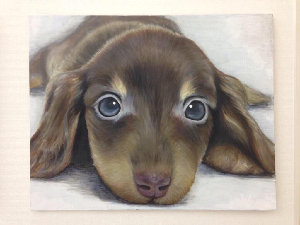 あなたのお家の一角に飾る油絵を描かせてくださいます 写実的な絵で部屋にアクセントを出したい方
