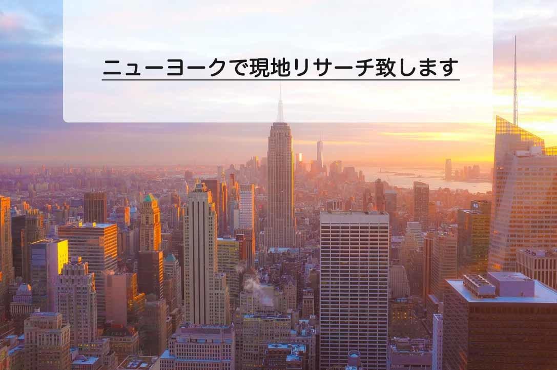 ニューヨークでリサーチいたします ニューヨーク現地の情報収集をして欲しい事手伝います! イメージ1