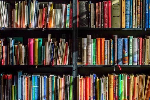 興味関心をヒアリングしてオススメ小説を紹介します あなただけの「面白いと感じる本」探してきます