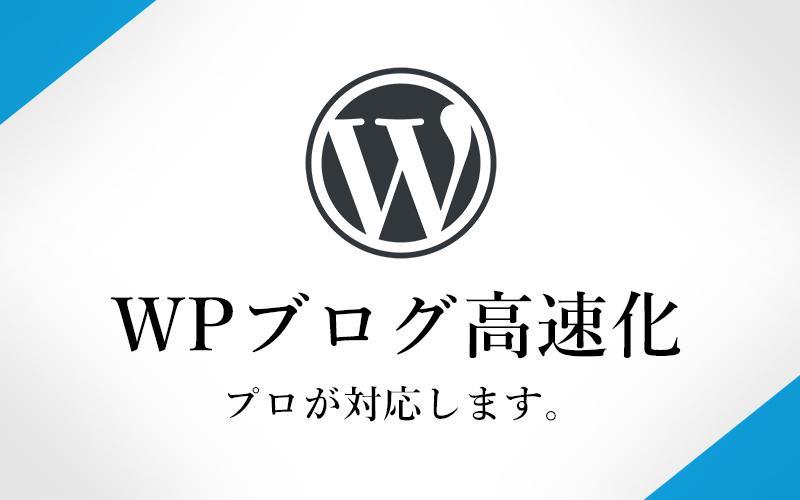 WPブログを超高速化!成功報酬型。プロが対応します 現役のWEBクリエイターが、あなたのWPブログを超高速化!! イメージ1