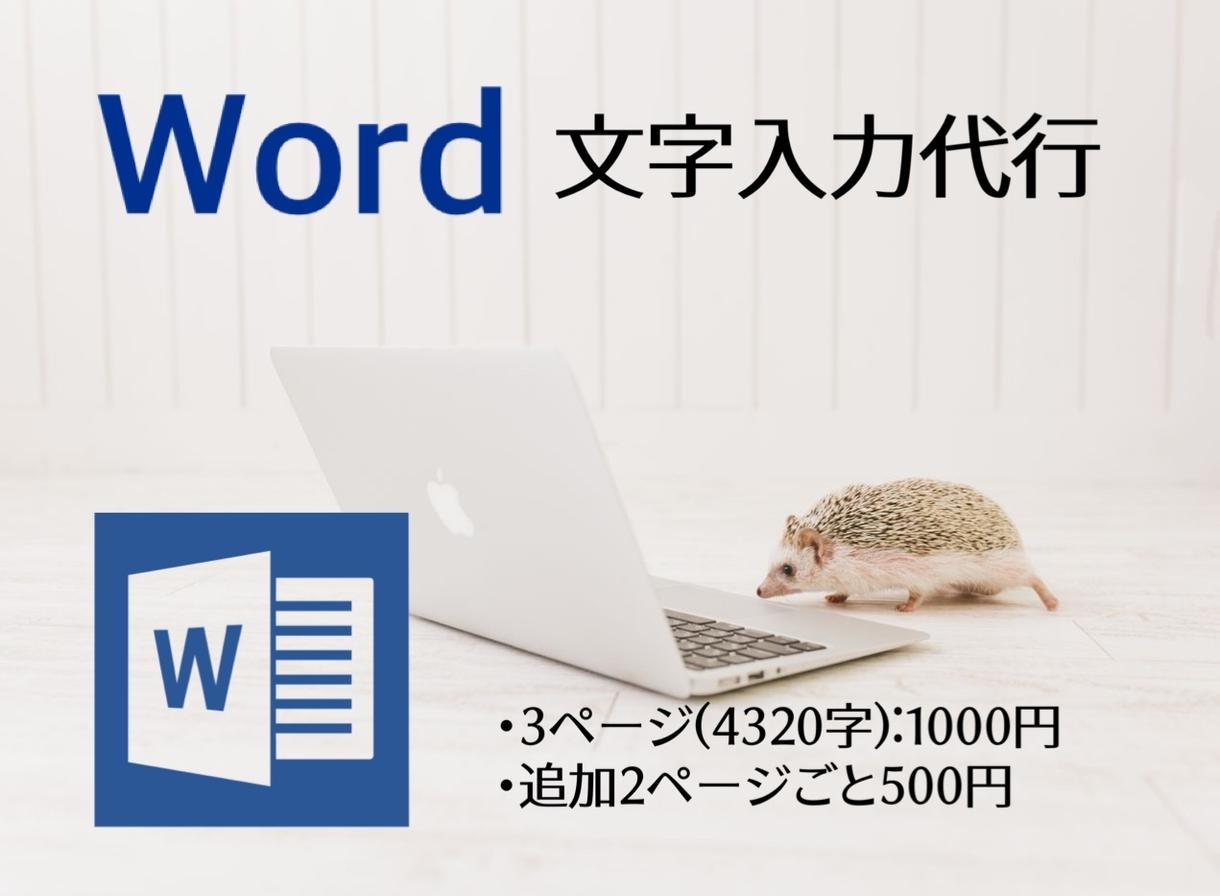 Word文字入力代行致します PDFデータの文字起こしや、資料作成いたします! イメージ1
