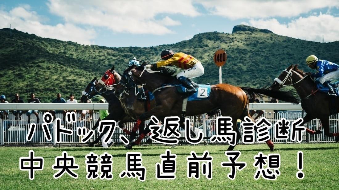 中央競馬予想、返し馬を見て予想してます 返し馬、パドック診断!重賞をメインに予想しております。 イメージ1
