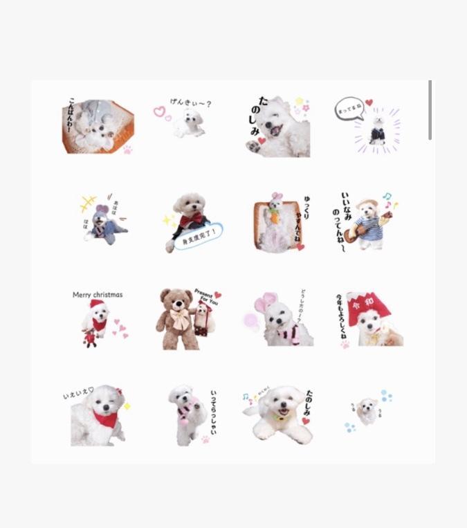 ペットのオリジナルLINEスタンプ作ります 作成~販売まで全工程込み!特別な愛犬スタンプ イメージ1
