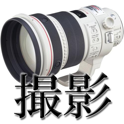 写真撮影、編集、白抜き加工、行います 写真についての相談事はすべてお任せ下さい!