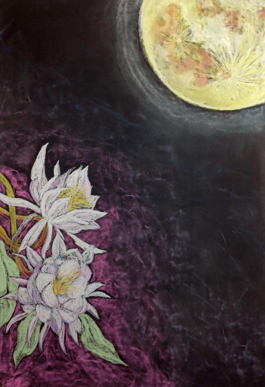 黒板アートでイラスト描きます プレゼント、チラシ、動画用、カフェメニュー等に♪