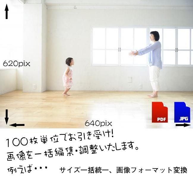 冬コミ・夏コミ・コスホリ・各種イベント対応します コスプレ・ポトレ・ROM写真の加工・レタッチ。100枚即納!