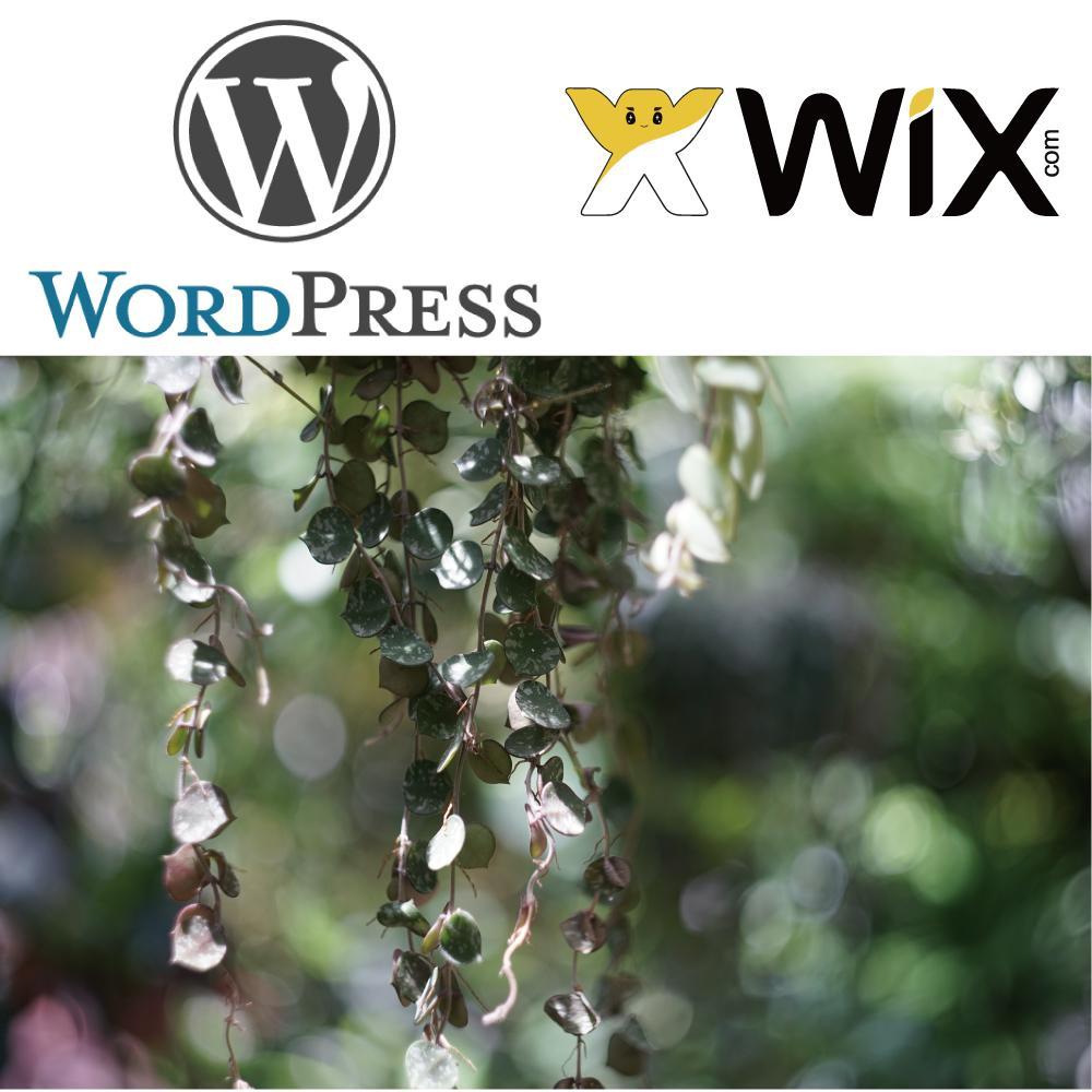 Wordpressで印象的なサイトお作り致します 類似サービスの中でも大変お得です! イメージ1