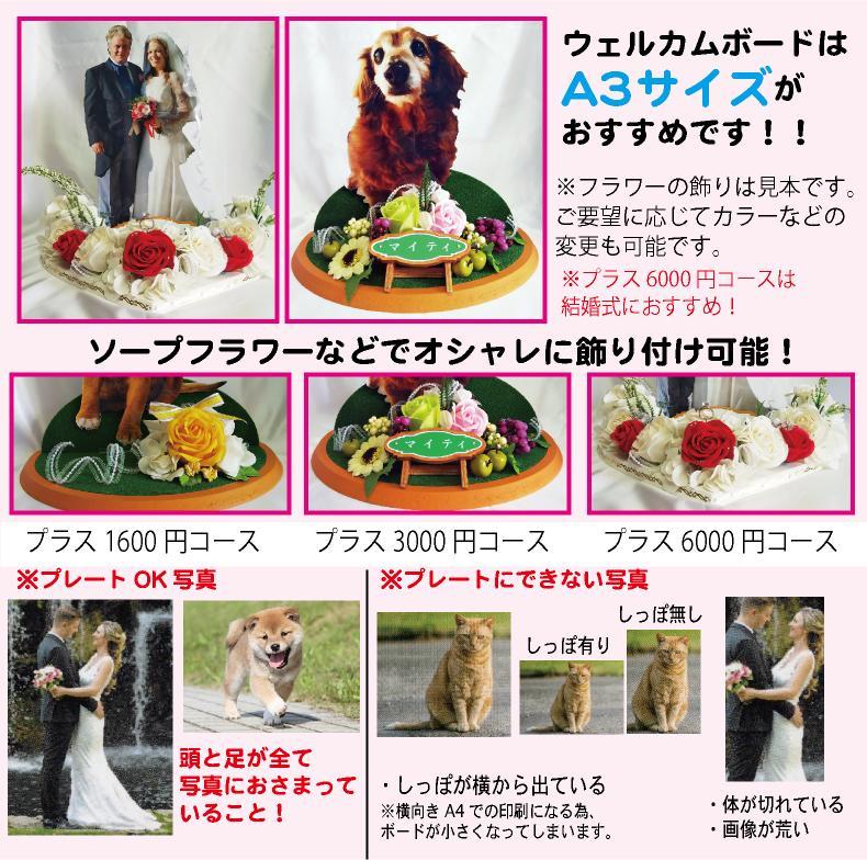 結婚式用のウェルカムボード制作します 結婚式以外にもペット、成人式、七五三などの記念日にも最適です