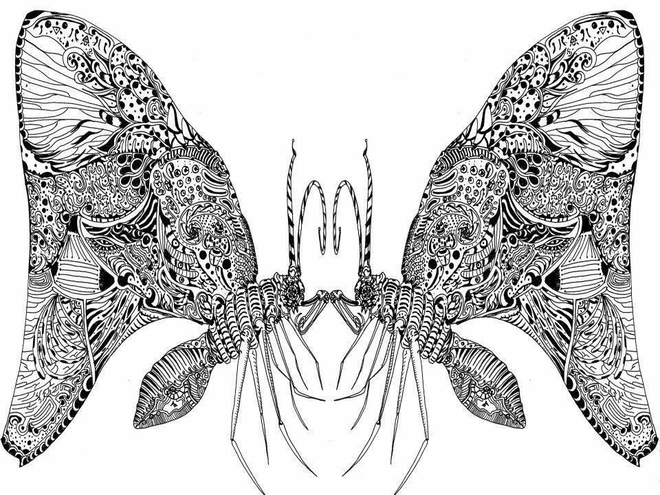 イラストデザイン  フライヤーなど描きます サイケデリックなデザインや。細かい抽象的なものが得意です。