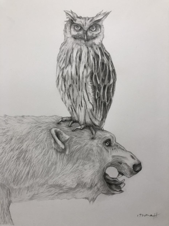 動物や人物画を描いています 愛するペットや人物画を印象的に描きます。