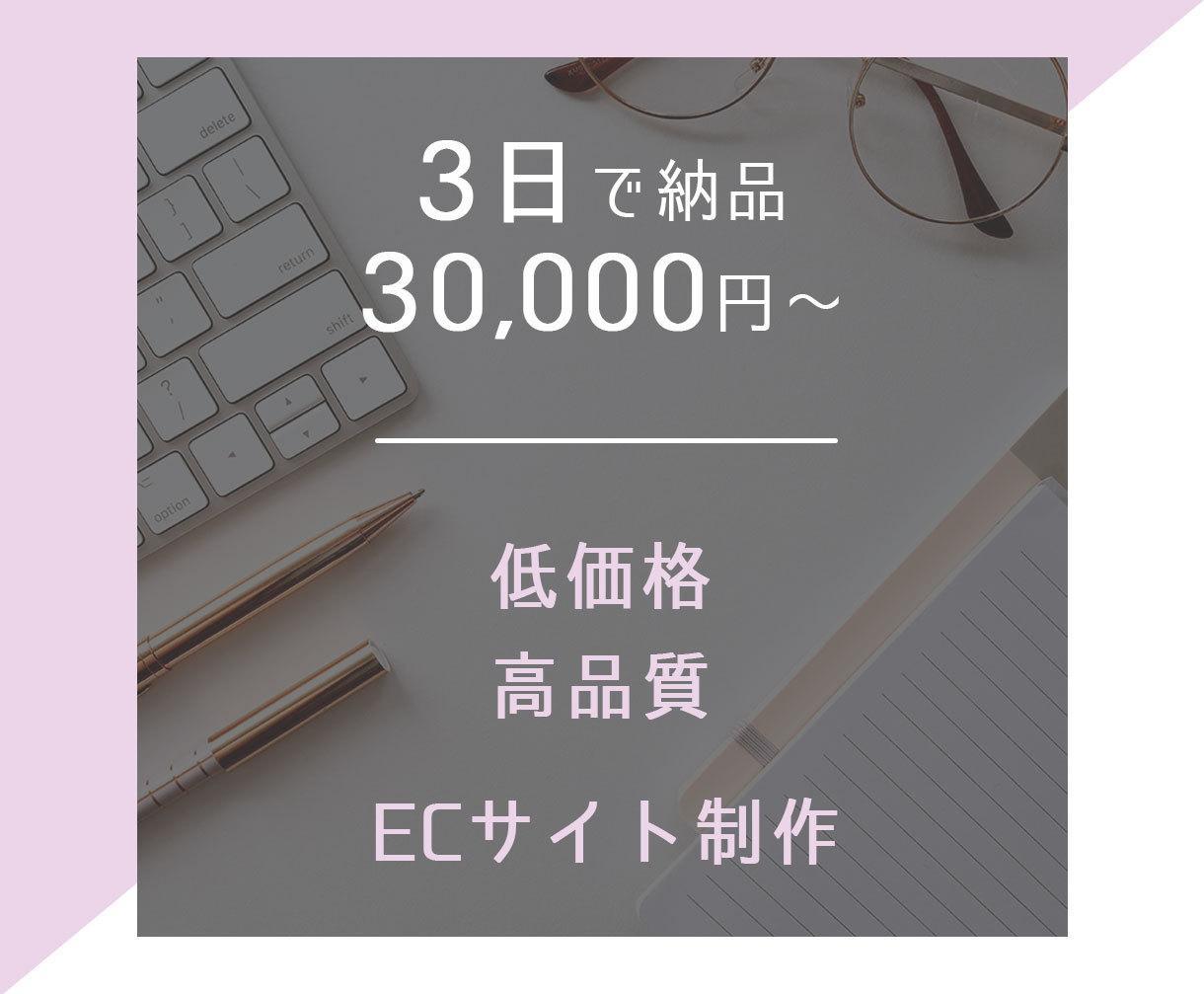 ECサイトを3万円で制作します シンプルでわかりやすい売れるECサイト! イメージ1