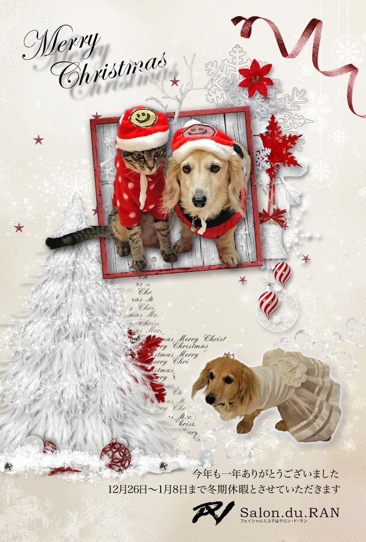 オリジナルデザインポストカードを作成します 引っ越しのごあいさつや年賀状、クリスマスカードなどに!
