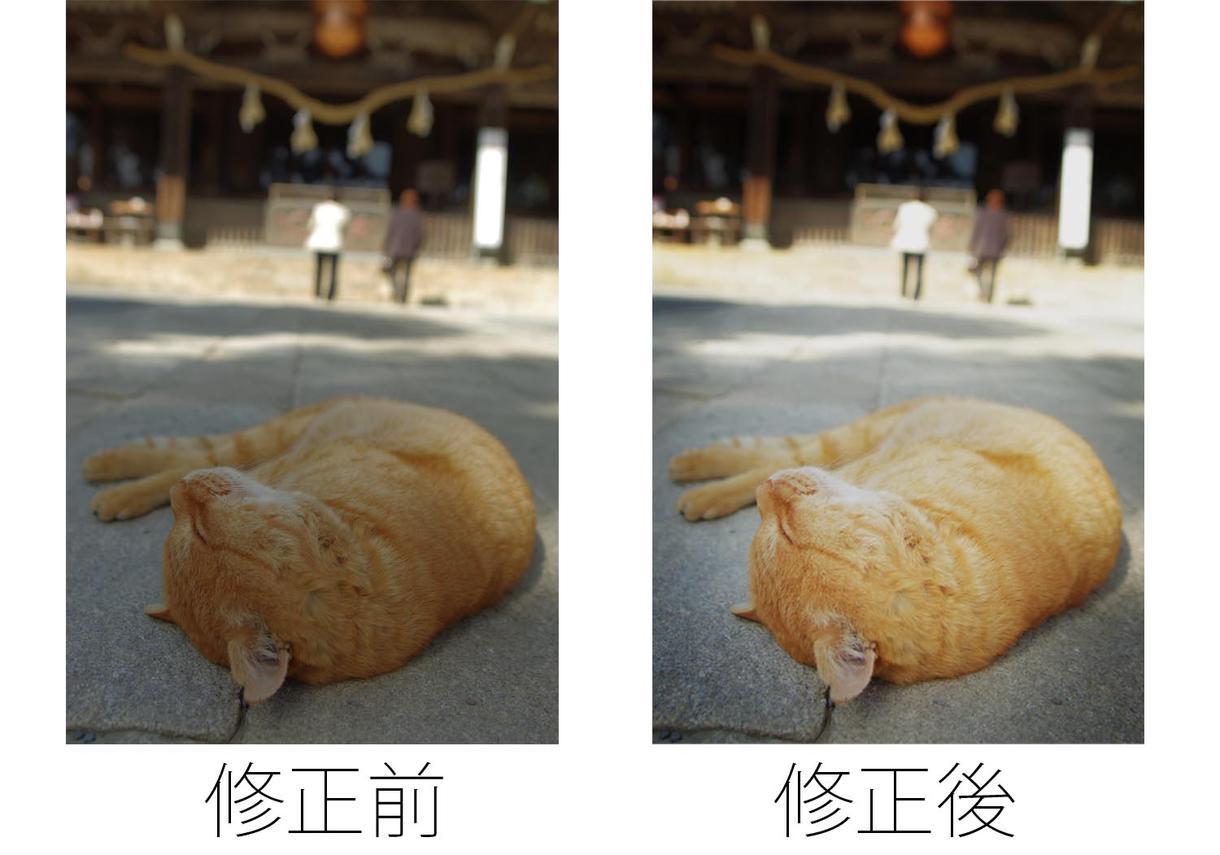 ★☆写真編集★☆あなたのお写真雰囲気を変えます!