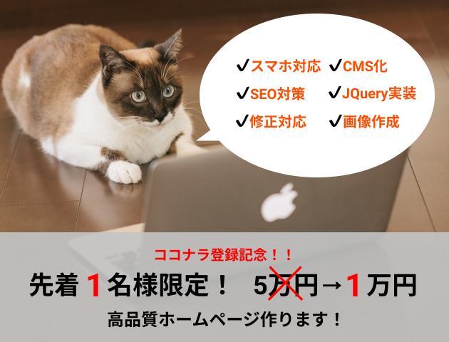 先着1名様限定!1万円でオリジナルHPを制作します 訪問者を惹きつけ、利益に繋がるHPを制作いたします イメージ1