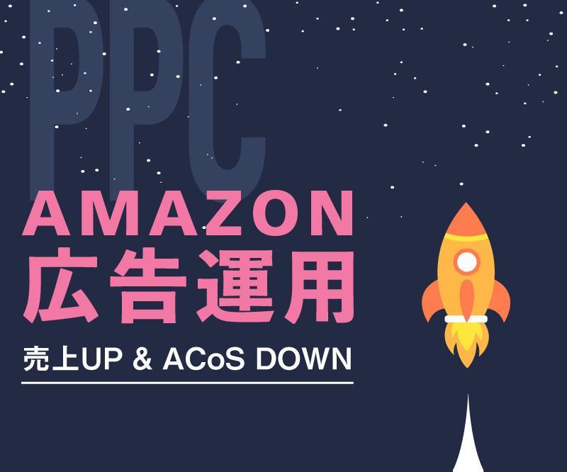 Amazon PPC広告を戦略的に運用します ローンチからメンテナンスまでおまかせ イメージ1