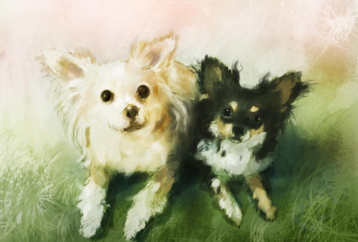 ペットのイラスト描きます リアルからユルいタッチまで。大切な方へのプレゼントにもどうぞ