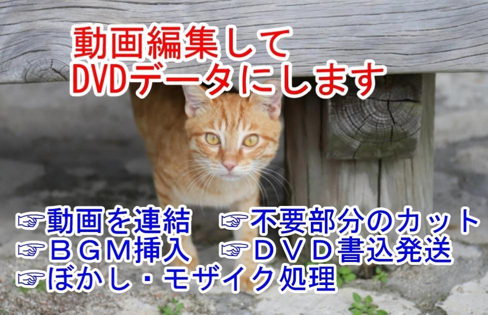 撮影した動画を1本に編集してDVDデータにします 動画を【連結】【カット】【BGM挿入】【DVD書込】します