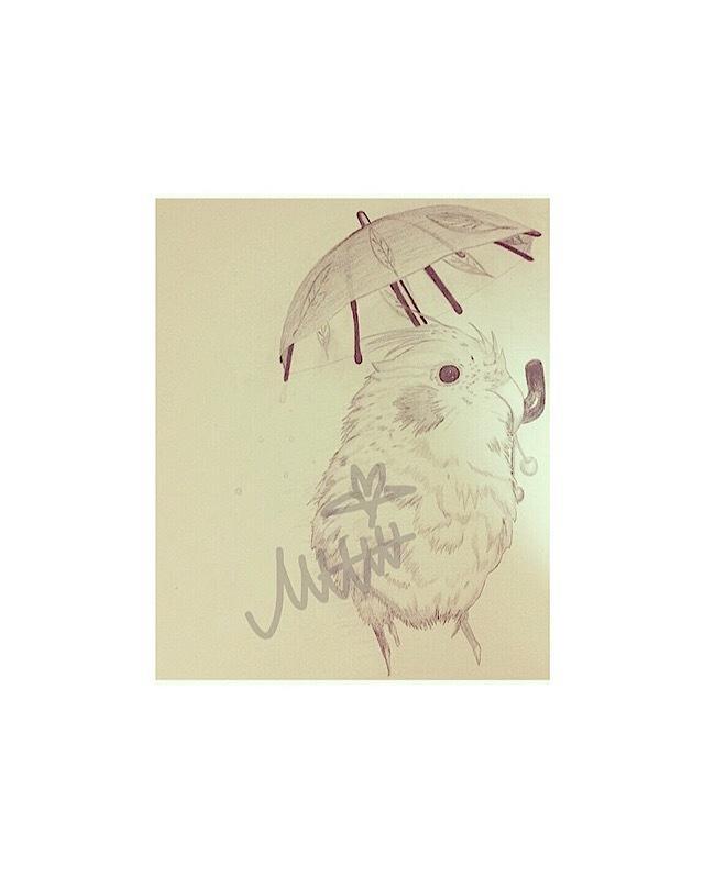 手描きの癒し系動物お描きします お写真や資料を元に癒し系動物のイラストお描きします