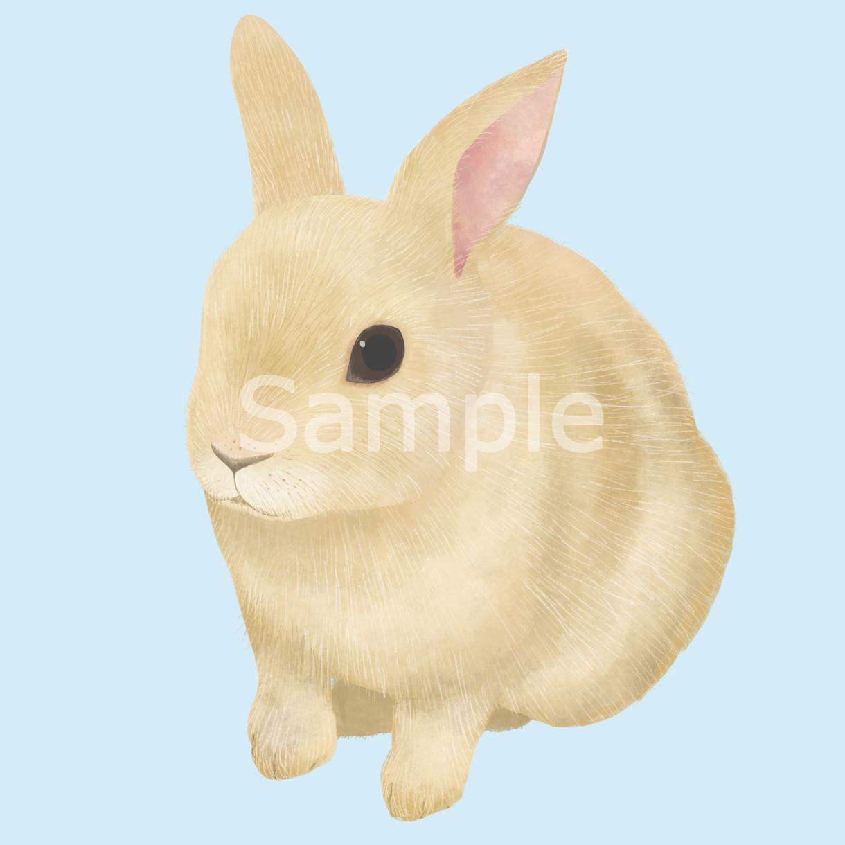 動物のイラストを水彩画風の優しいタッチで制作します ~挿絵やアイコン、プレゼントなどに~ イメージ1