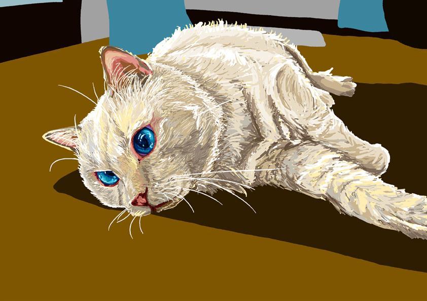 リアルタッチでペットのイラストお描きします 物品配送にも対応! 額に入れてお届けします。