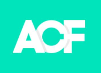 無期限無制限ライセンス ACF Pro 導入します コンテンツ入力/管理が簡単に!複数/アフィリエイトサイトにも