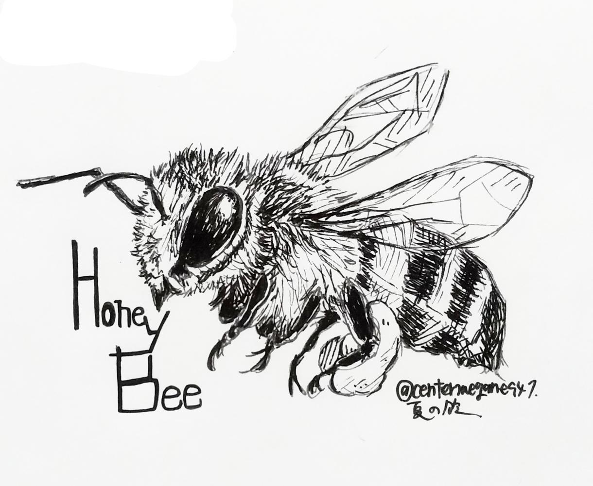 リアルタッチの虫イラスト描きます アイコン・挿絵など、お好きな用途に…! イメージ1