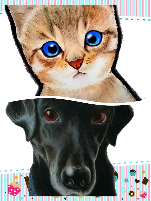 ペットのオーダー受付けます かわいいペットをアイコンや思い出にどうぞ♪