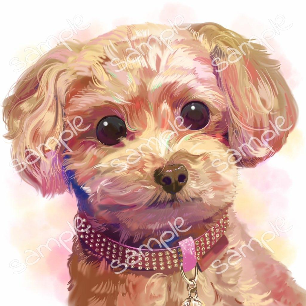 大好きなペットを可愛く描きます 写真では表せないカラフルな表現で愛らしいペットを描きます! イメージ1