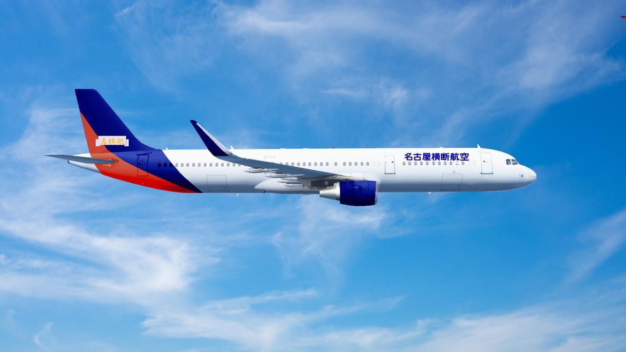 あなたの架空航空会社を再現します あなたの飛行機を空へとご案内します