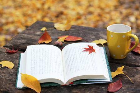 読書嫌いも読みきれるお勧め自己啓発本紹介します 人生を変えたい普段あまり読書をしない買ったけど読みきれない方 イメージ1