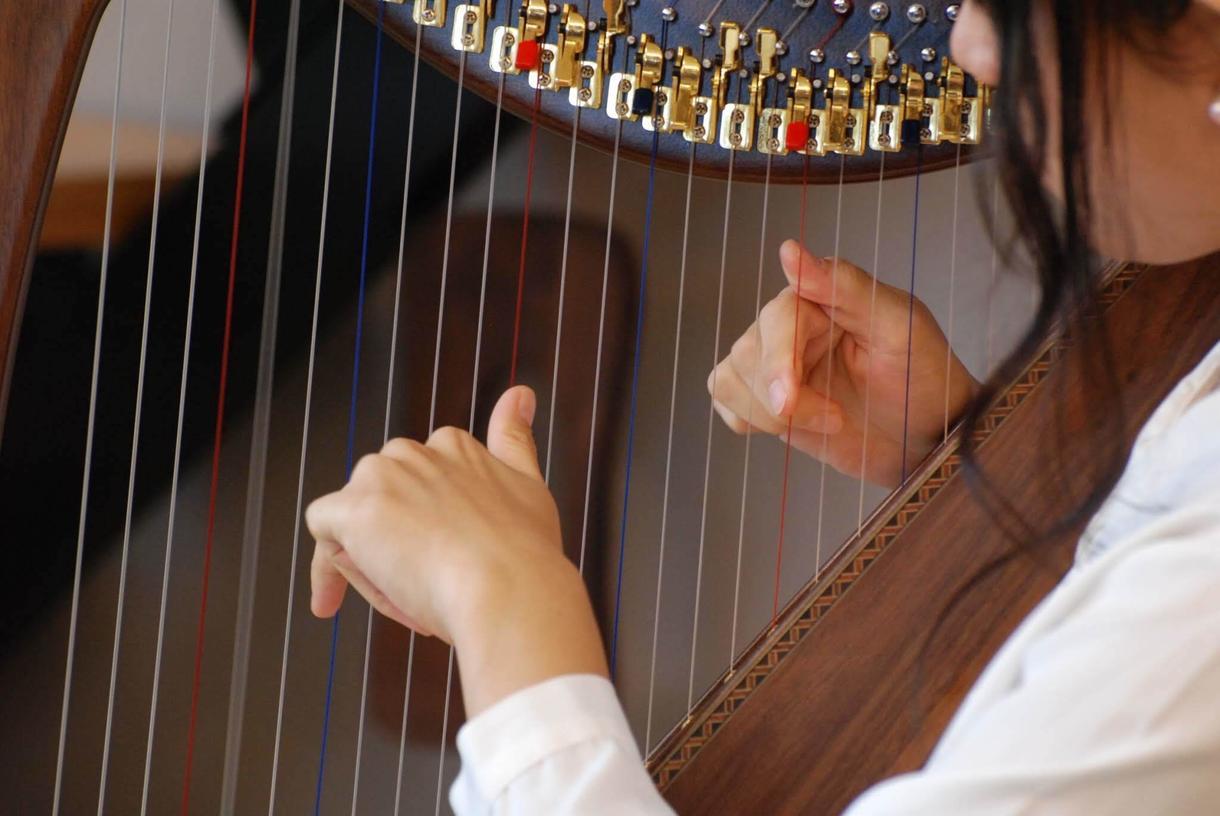 ミニハープで!ゆっくり見本の演奏をします プロハーピストが分かりやすく演奏!4小節2000円~ イメージ1