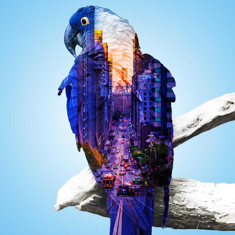 ペットを風景と合成したアートにします インテリアやポストカードなどにいかがですか?