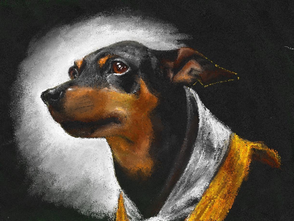 ペットの絵をクレヨン画風にリアルに描きます 最短即日!プレゼントやアイコン、壁紙にも