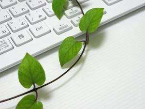 小規模なホームページの修正・変更をお手伝い致します。HTML・CSS・WordPress