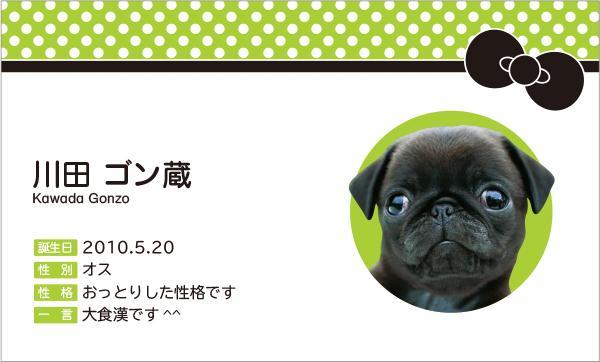 ペットと飼い主さんのコミュニケーションツール ペット名刺デザインします