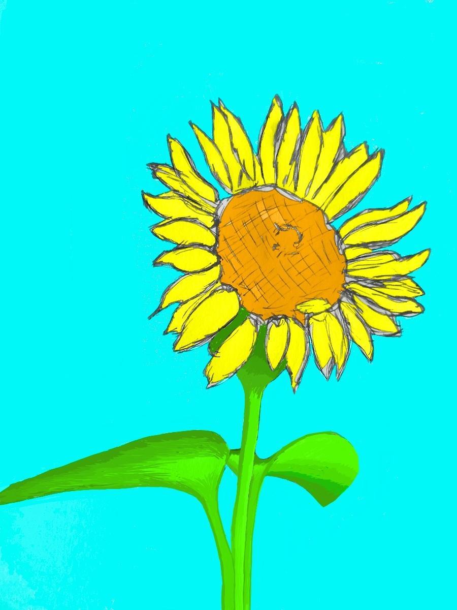 イメージに合わせてデザイン描きます 挿し絵、しおり、ポストカードにオススメ!