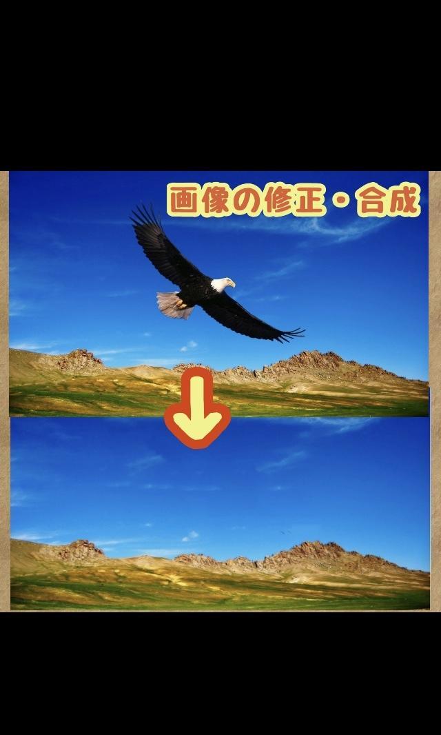 画像の修正・合成・改良致します ★ご満足頂けるまで調整可能です