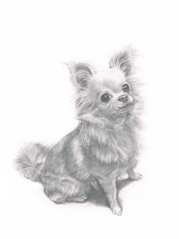大切な愛猫・愛犬の絵を描きます 記念やプレゼントにも。【原画郵送可】