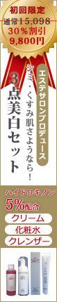 【ECショップバナー作成】楽天・Yahoo!でも使える★良く見る縦長バナーの作成