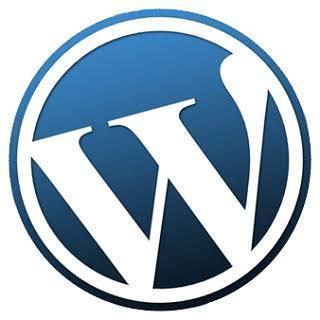 ドメインやサーバーの取得を全面サポートします WordPressでHPやブログを始めたい初心者の方へ。