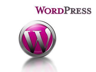 WordPressプラグイン作成します 現役プログラマーがあなたのだけのプラグインを作成 イメージ1